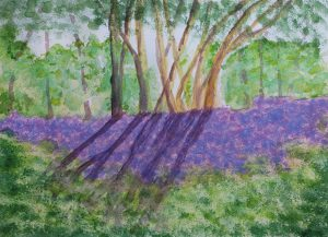 Watercolour painting of bluebell wood