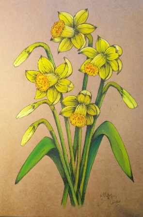 Painting of four daffodils