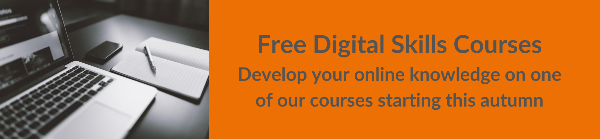 Digital Skills Banner