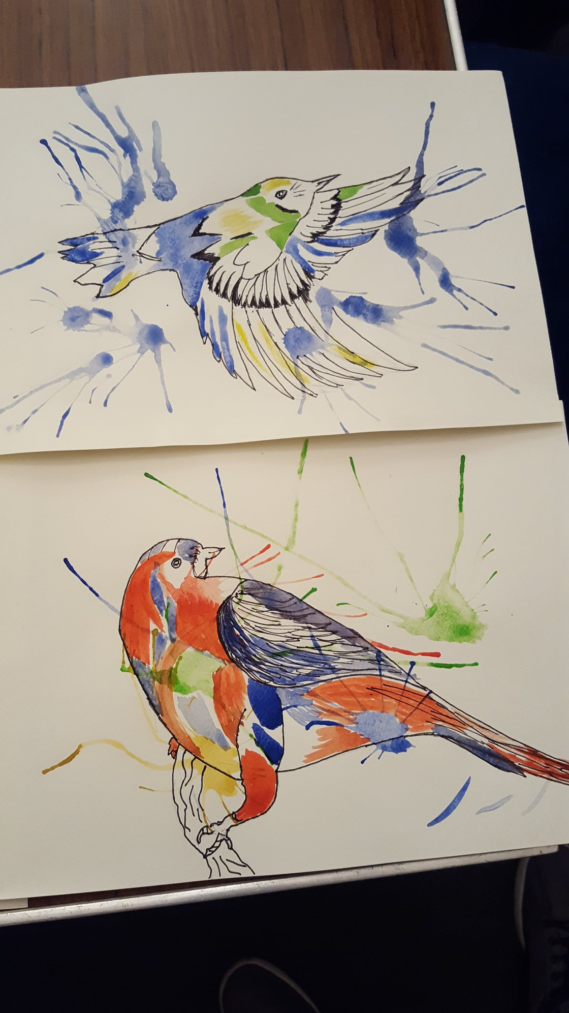 Pen and paint drawing of two birds