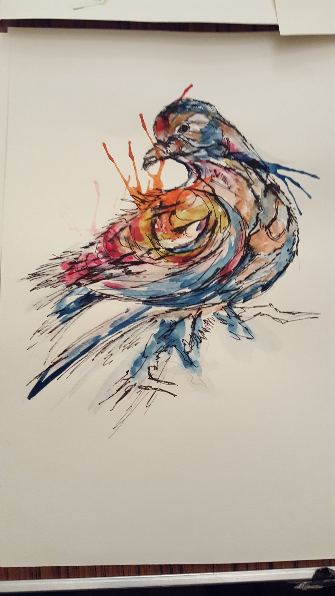 Pen and paint drawing of a bird