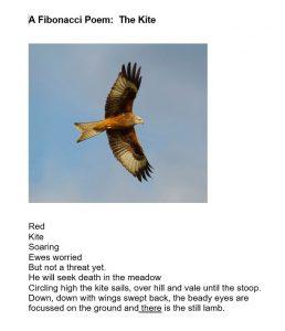 Poem - The Kite