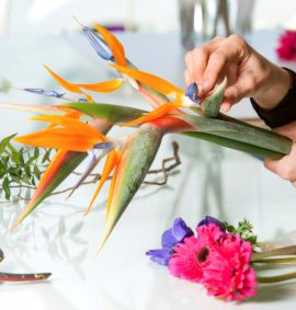 Hands arranging unusual flowers