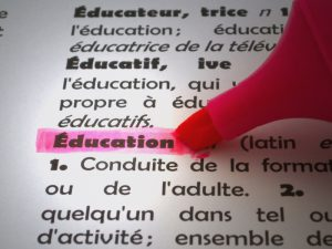 Using a Pink High lighter in a French dictionary