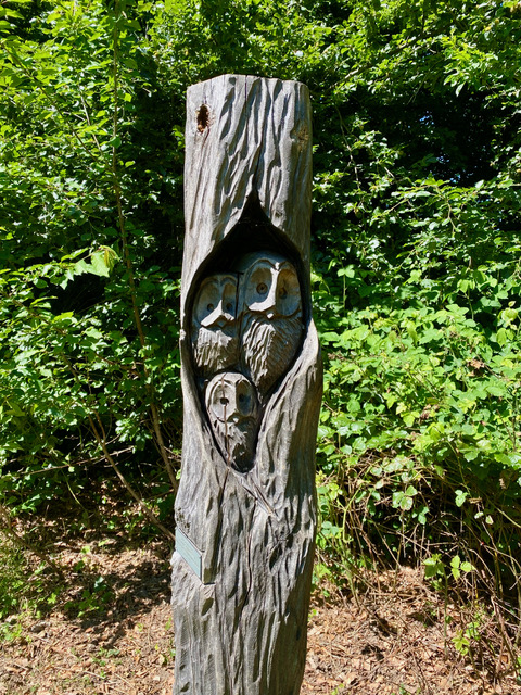Carved tree stump with owls