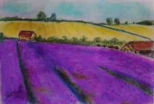 Lavender field in soft pastels