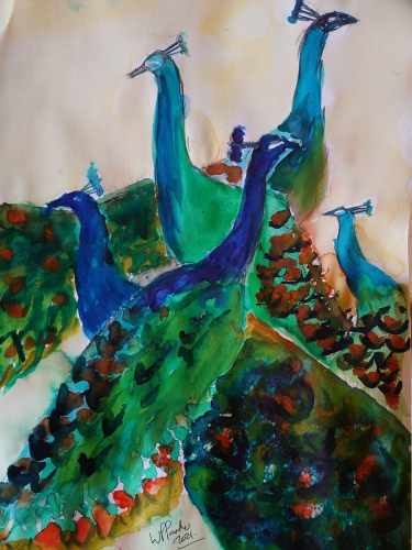Peacocks in watercolour