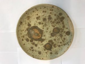 ceramic plate with brown mottled design