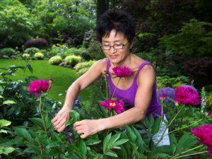 Woman cutting flowers in a garden