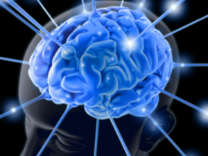 Blue image of brain on top of a head